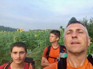 campo girasoli